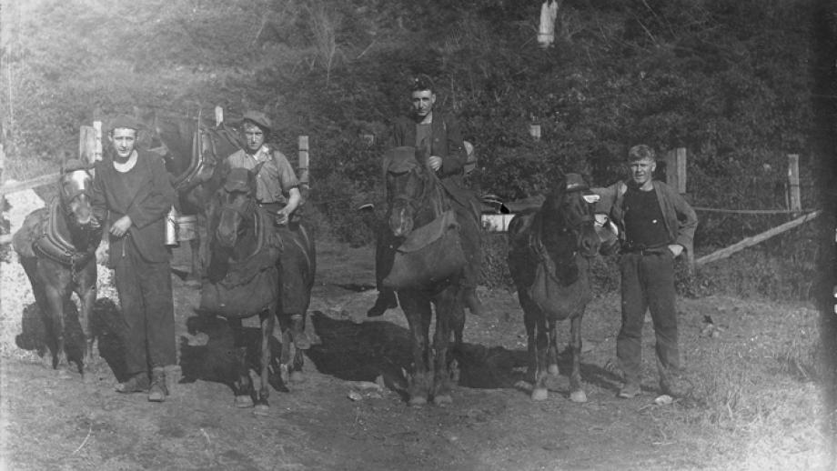 Wheelers and their horses at the Excelsior Colliery