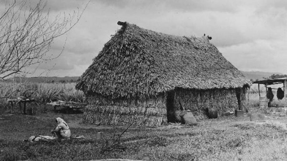 An Indian cane grower's home at the Nasauri Mill, Naselei