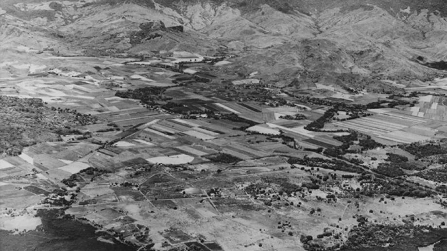 Penang Mill and surrounding cane lands, 1948